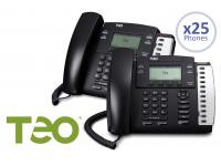 Teo 25 User Cloud UC Hosted SMB Package w/Free 4104 IP Phones