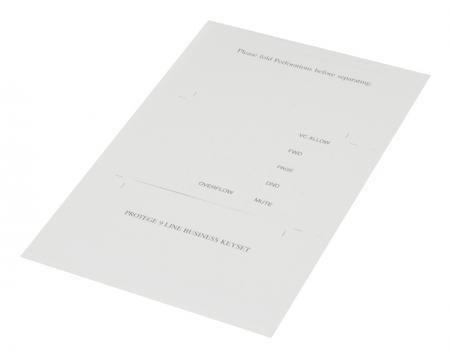 Sprint Protege Business Key Set Black Display (475714) Paper DESI