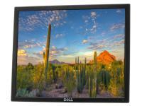 """Dell E190S 19"""" Black LCD Monitor - Grade C - No Stand"""