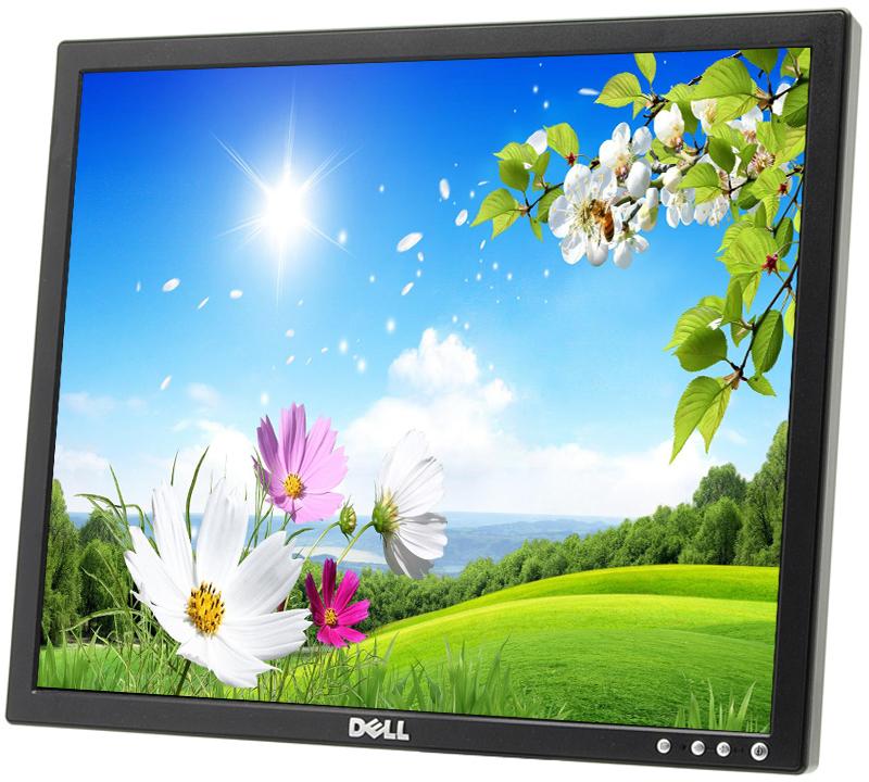 """Dell E190Sf Black 19/"""" LCD Flat Panel Monitor Display VGA w// Cords Grade A"""