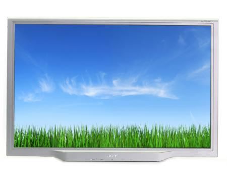 """Acer AL2223W 22"""" Widescreen LCD Monitor - Grade C - No Stand"""